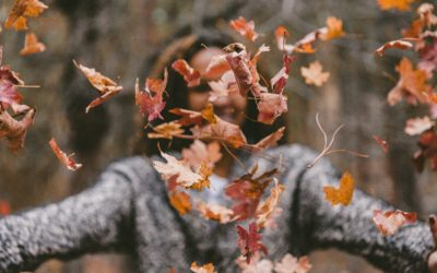 Hanfsamenöl …… Stimmungsmacher für düsteren Herbst